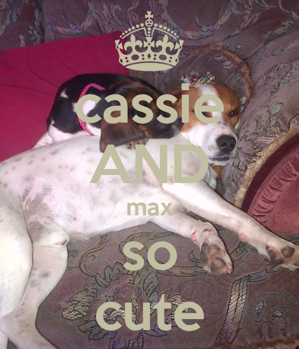 cassie AND max so cute