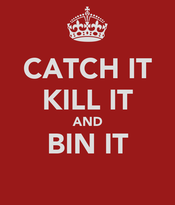 CATCH IT KILL IT AND BIN IT