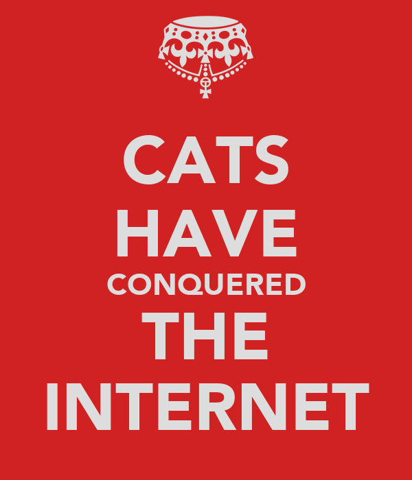 CATS HAVE CONQUERED THE INTERNET