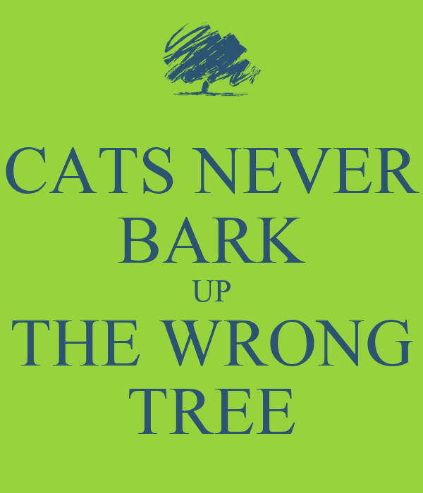 CATS NEVER BARK UP THE WRONG TREE