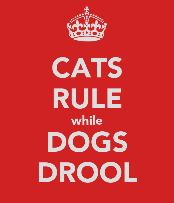 CATS RULE while DOGS DROOL
