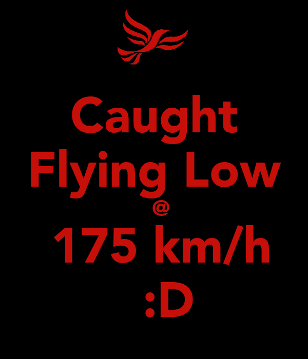 Caught Flying Low   @  175 km/h   :D
