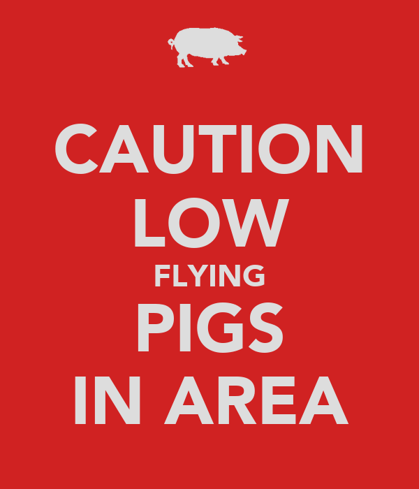 CAUTION LOW FLYING PIGS IN AREA