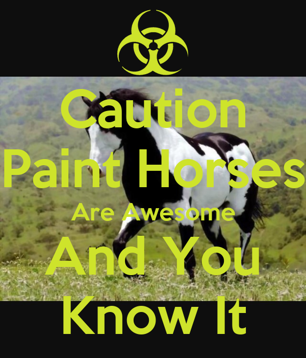 Caution Paint Horses Are Awesome And You Know It