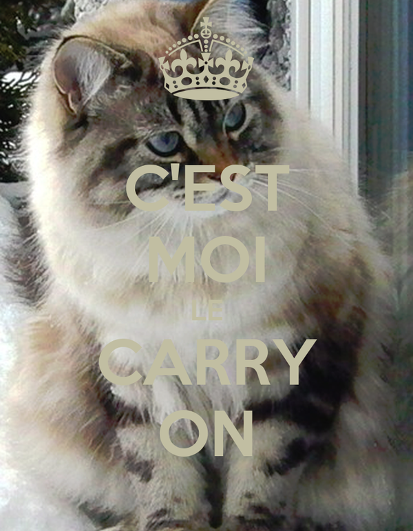 C'EST MOI LE CARRY ON