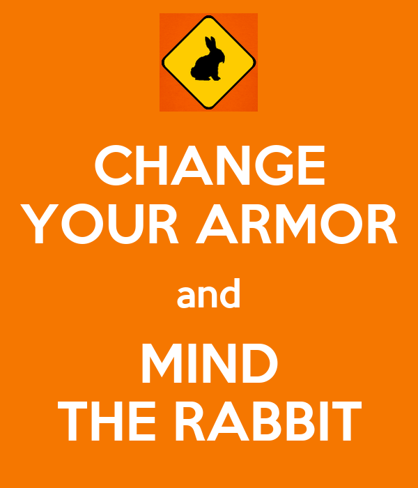 CHANGE YOUR ARMOR and MIND THE RABBIT