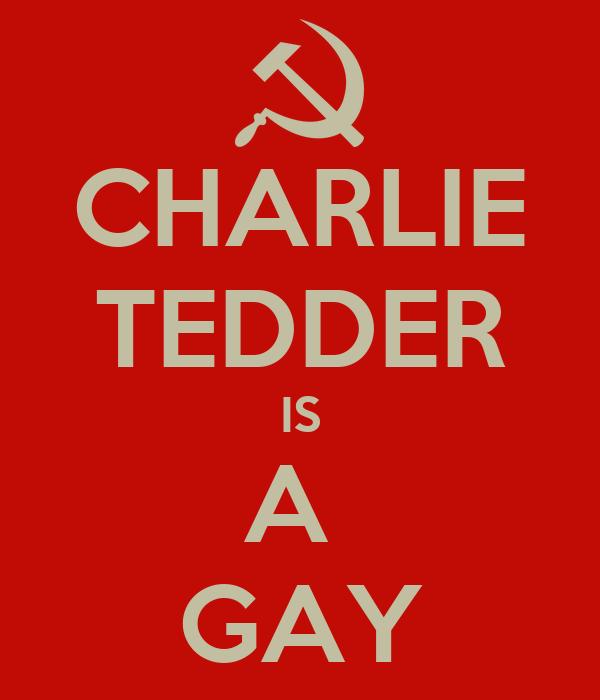 CHARLIE TEDDER IS A  GAY