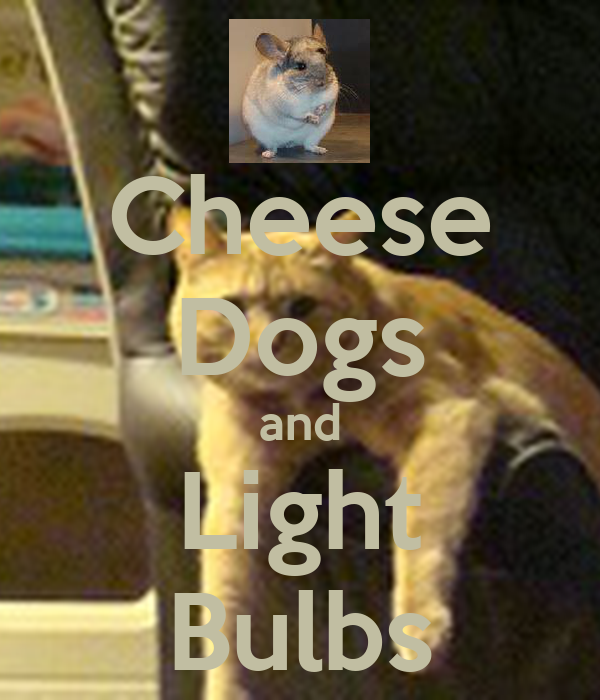 Cheese Dogs and Light Bulbs