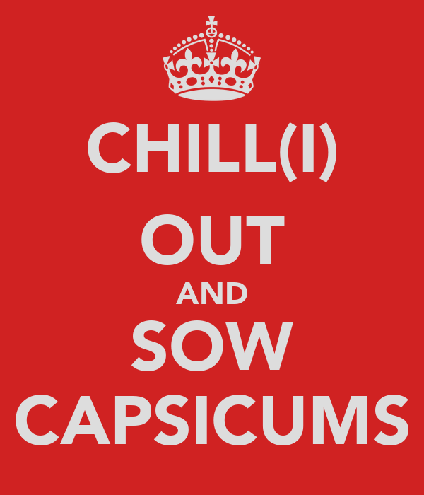 CHILL(I) OUT AND SOW CAPSICUMS