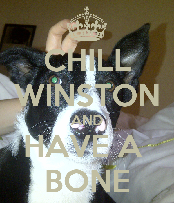 CHILL WINSTON AND HAVE A  BONE