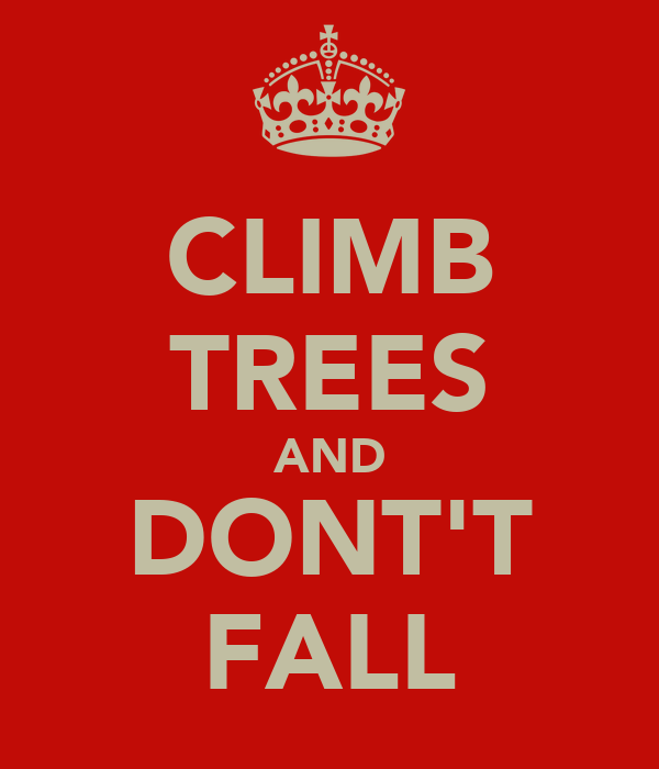 CLIMB TREES AND DONT'T FALL