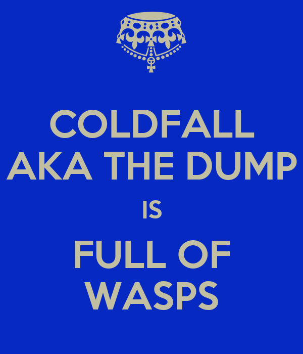 COLDFALL AKA THE DUMP IS FULL OF WASPS