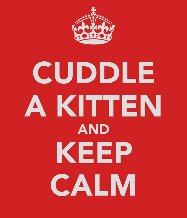 CUDDLE A KITTEN AND KEEP CALM