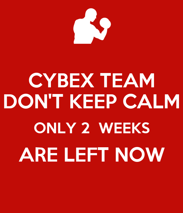 CYBEX TEAM DON'T KEEP CALM ONLY 2  WEEKS ARE LEFT NOW