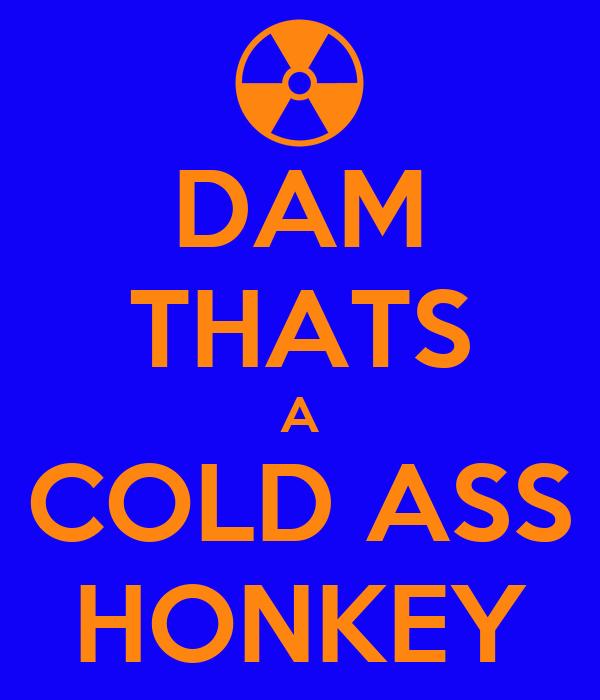 DAM THATS A COLD ASS HONKEY