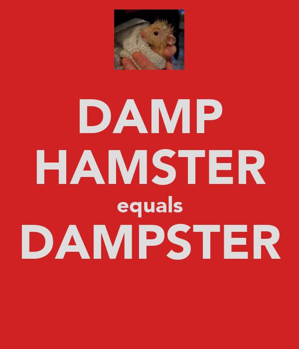 DAMP HAMSTER equals DAMPSTER