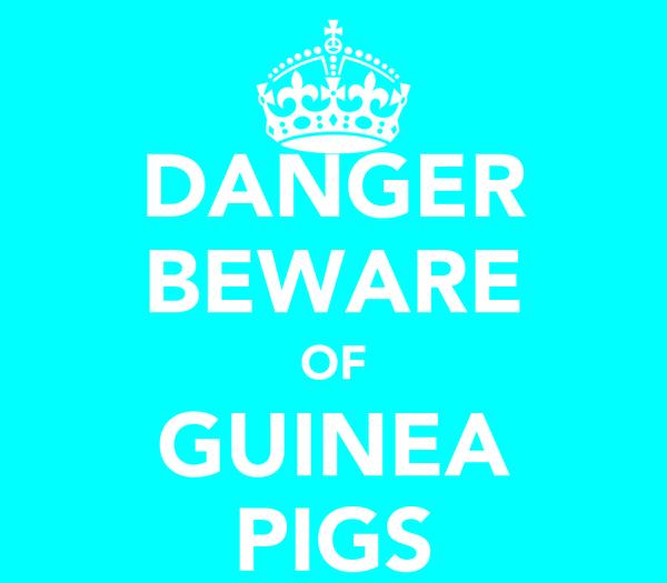 DANGER BEWARE OF GUINEA PIGS