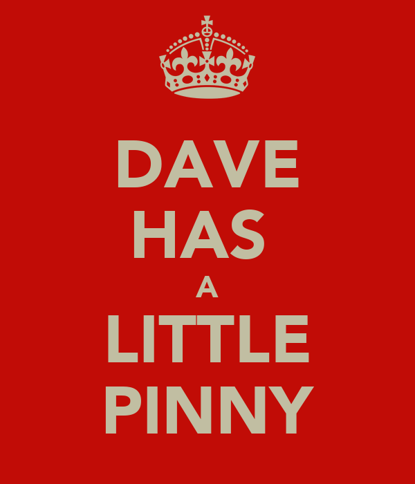 DAVE HAS  A LITTLE PINNY