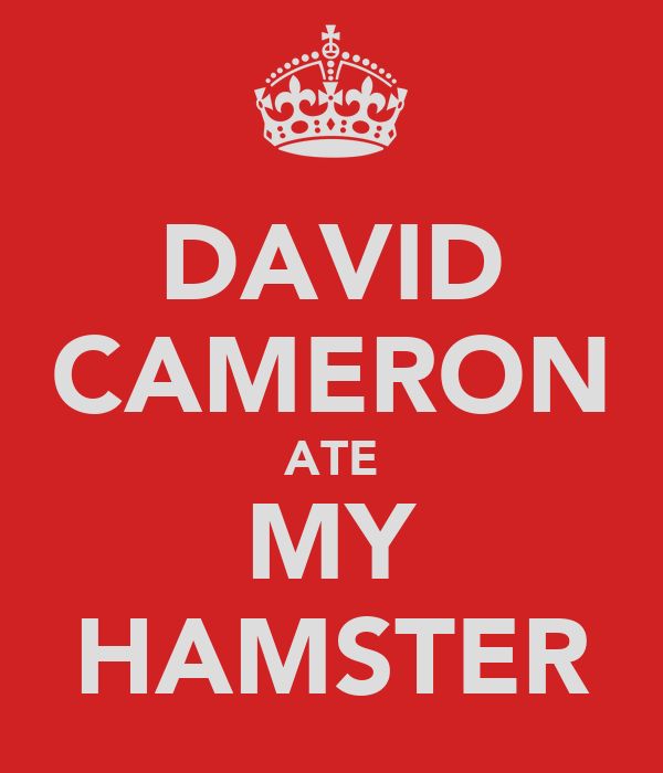 DAVID CAMERON ATE MY HAMSTER