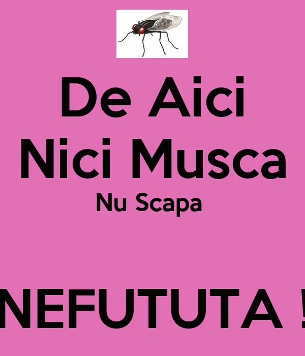 De Aici Nici Musca Nu Scapa   NEFUTUTA !