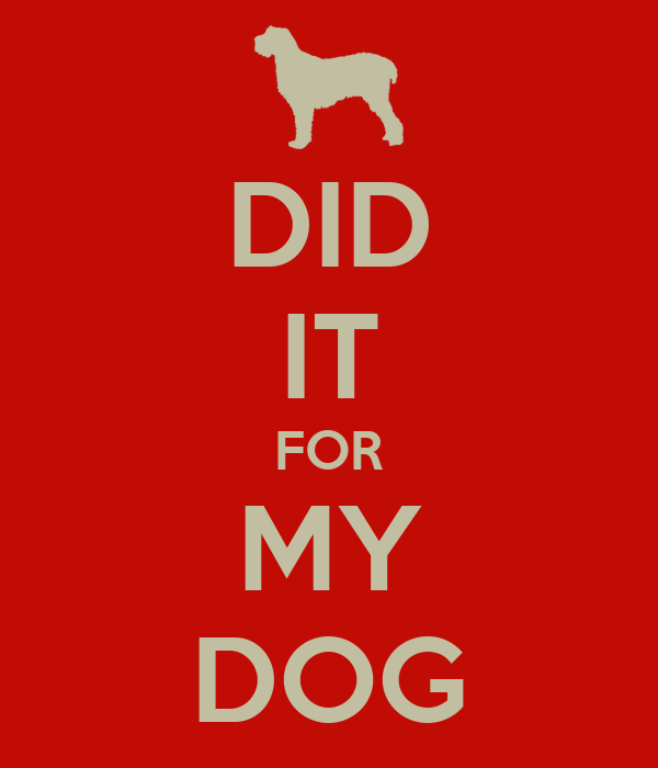 DID IT FOR MY DOG