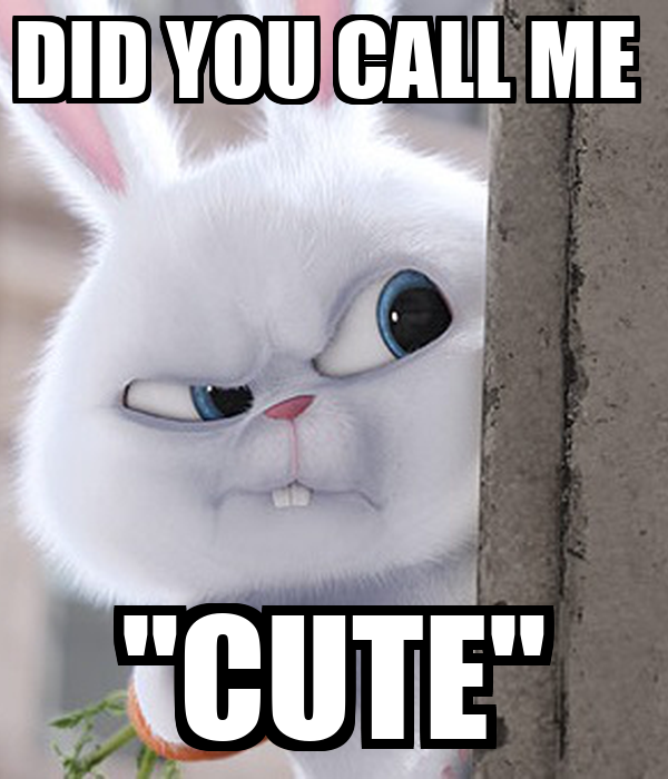 "DID YOU CALL ME  ""CUTE"""