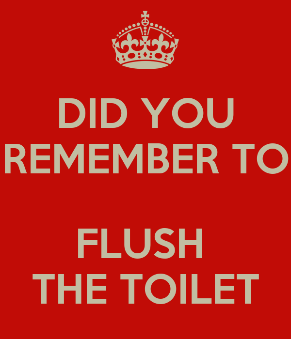 DID YOU REMEMBER TO  FLUSH  THE TOILET
