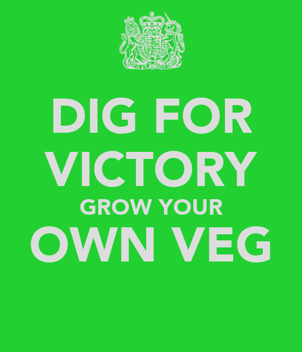 DIG FOR VICTORY GROW YOUR OWN VEG