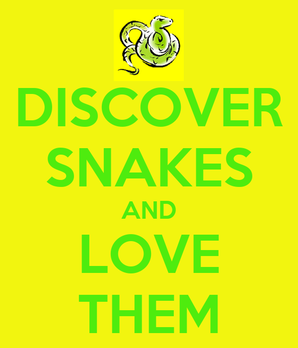 DISCOVER SNAKES AND LOVE THEM