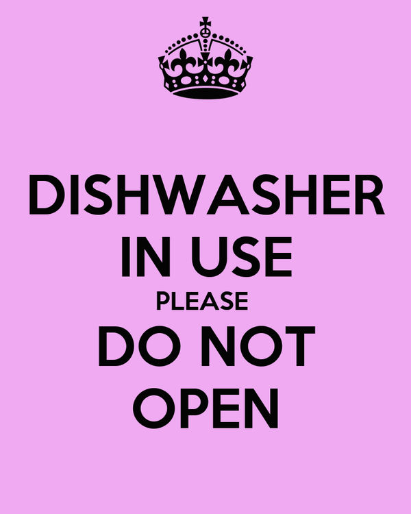 DISHWASHER IN USE PLEASE  DO NOT OPEN