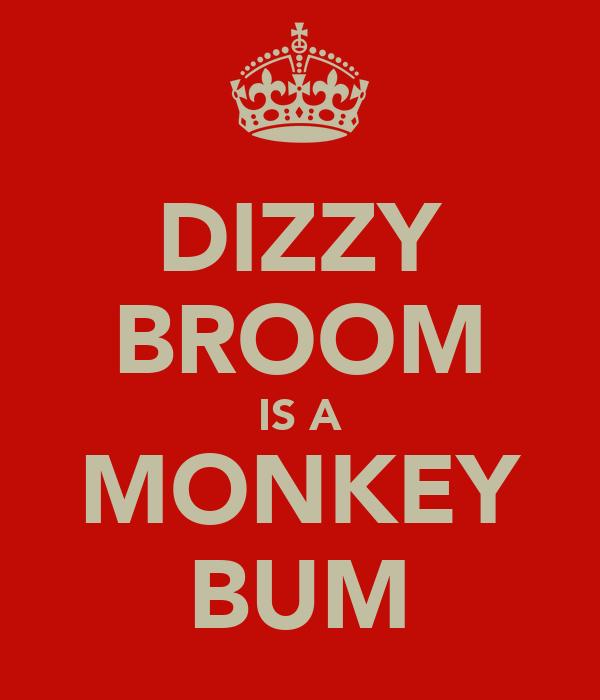 DIZZY BROOM IS A MONKEY BUM