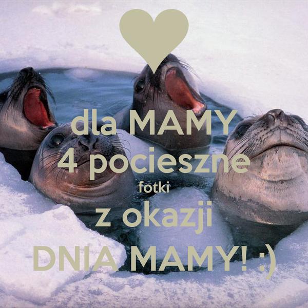 dla MAMY 4 pocieszne fotki z okazji DNIA MAMY! :)