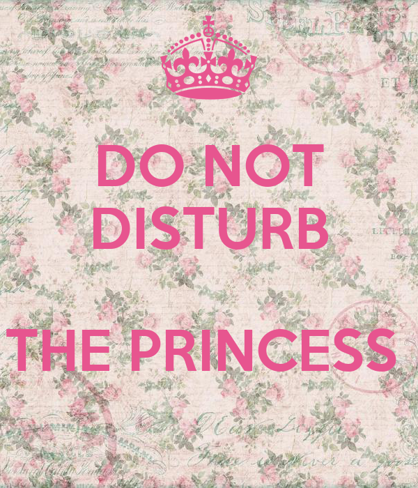 DO NOT DISTURB  THE PRINCESS
