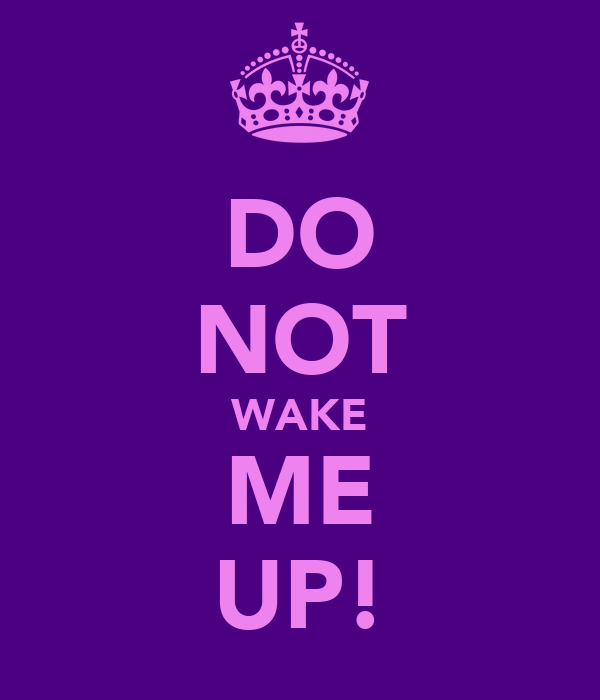 DO NOT WAKE ME UP!
