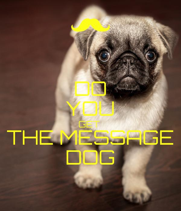 DO YOU GET  THE MESSAGE DOG