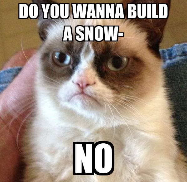 DO YOU WANNA BUILD A SNOW- NO