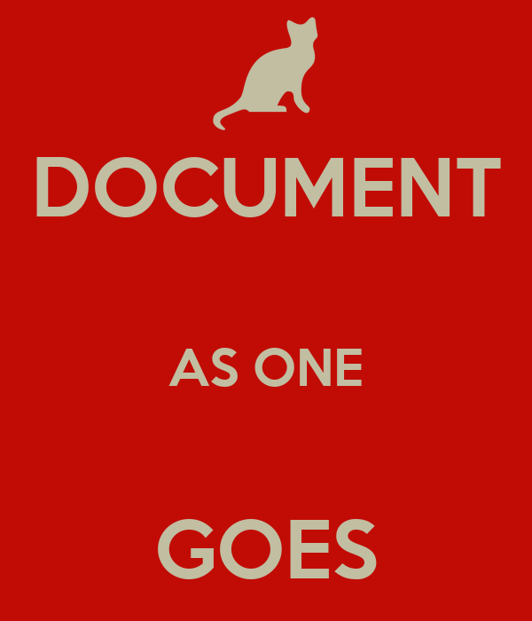 DOCUMENT  AS ONE  GOES