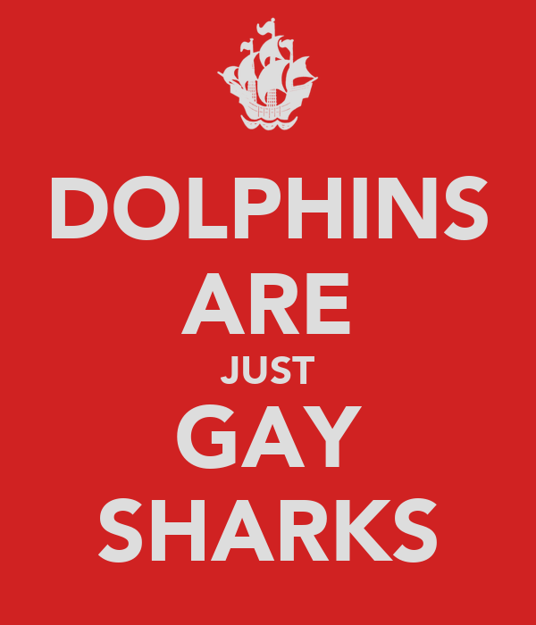 DOLPHINS ARE JUST GAY SHARKS