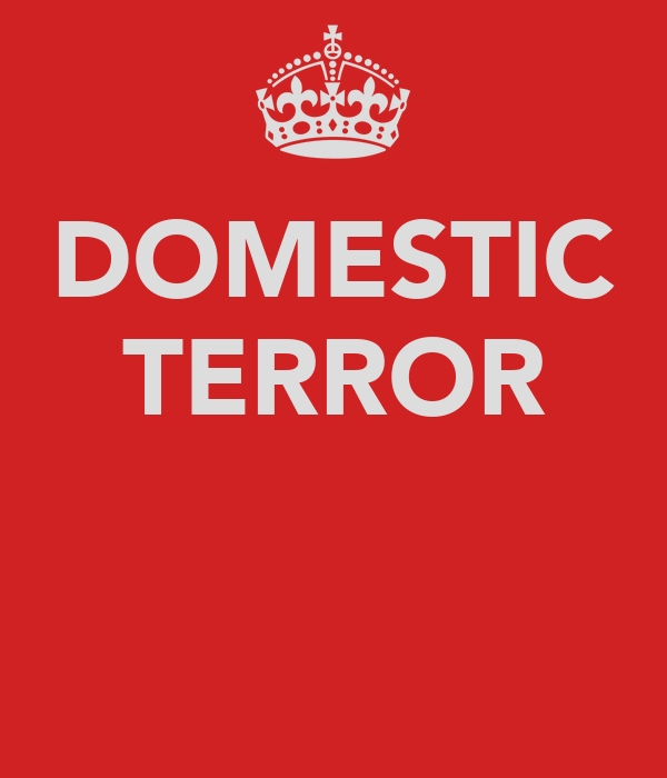 DOMESTIC TERROR