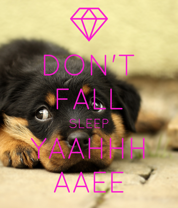 DON'T FALL SLEEP YAAHHH AAEE
