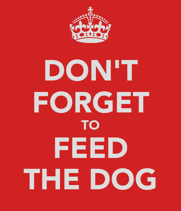 DON'T FORGET TO FEED THE DOG