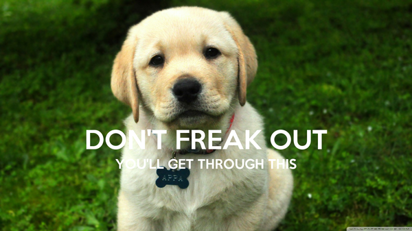 DON'T FREAK OUT YOU'LL GET THROUGH THIS