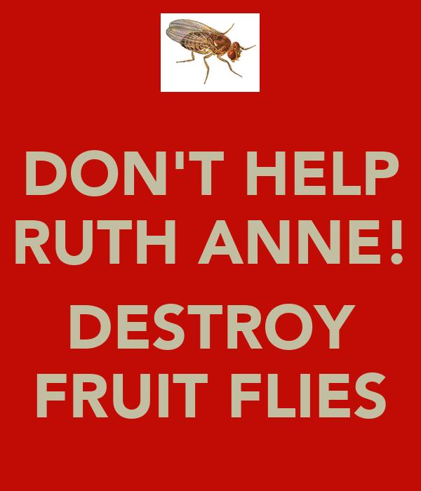 DON'T HELP RUTH ANNE!  DESTROY FRUIT FLIES