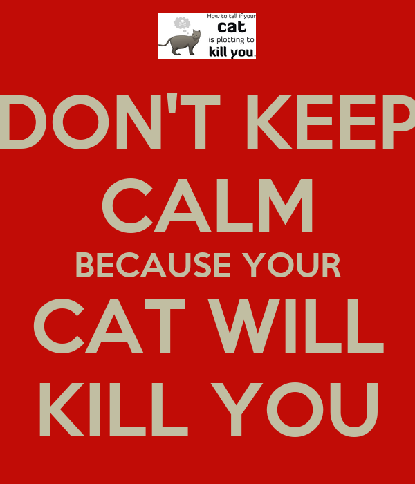 DON'T KEEP CALM BECAUSE YOUR CAT WILL KILL YOU
