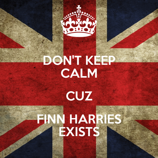 DON'T KEEP CALM CUZ FINN HARRIES EXISTS