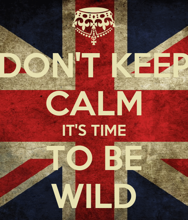 DON'T KEEP CALM IT'S TIME TO BE WILD