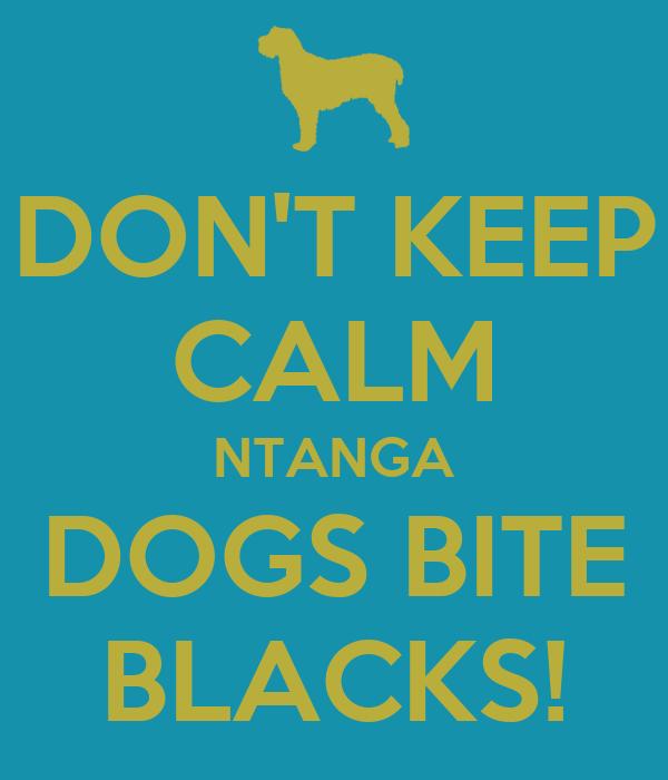 DON'T KEEP CALM NTANGA DOGS BITE BLACKS!