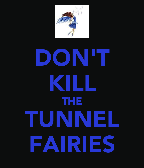 DON'T KILL THE TUNNEL FAIRIES