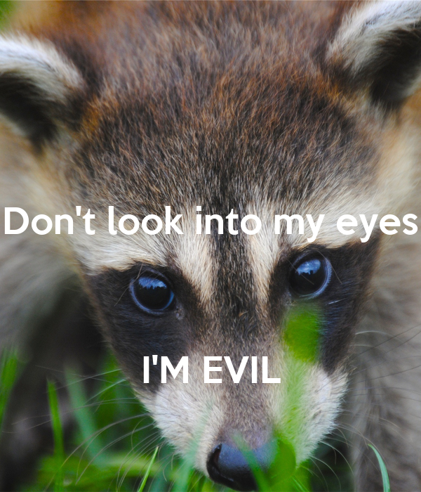 Don't look into my eyes    I'M EVIL