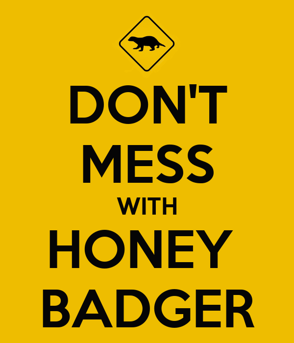 DON'T MESS WITH HONEY  BADGER